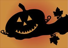 Free Pumpkin - Halloween Vector Royalty Free Stock Images - 3353849