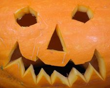 Free Pumpkin Royalty Free Stock Images - 3355229