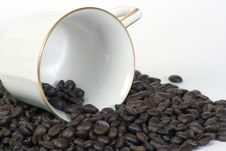Coffee Cup On Side In Beans Stock Photography