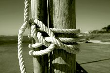Free Knot Stock Image - 3356561