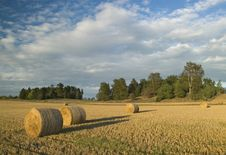Free Harvest In Sweden Royalty Free Stock Photography - 3358527