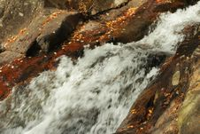 Free Rushing Mountain Stream Royalty Free Stock Photography - 3359487