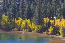 Free Yellow Trees On Shoreline Of L Stock Photos - 3359963