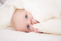 Free Baby Looking At Camera Under A White Blanket Stock Photography - 33510772
