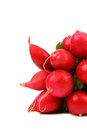 Free Bunch Of Radish Royalty Free Stock Images - 33553519