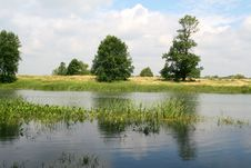 Free Tranquil Pond Royalty Free Stock Photo - 33562865