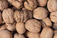 Free Walnut Background Stock Image - 33563231