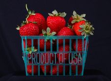 Free Strawberry Royalty Free Stock Photography - 33567487