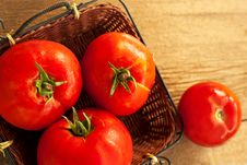 Free Fresh Tomato Royalty Free Stock Photos - 33569828