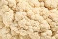 Free Cauliflower Background Stock Photography - 33577332