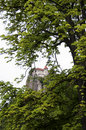 Free Bled Castle On The Cliff Between The Branches Of A Tree Royalty Free Stock Image - 33579086