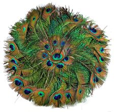 Free Peacock Feather In Circle Stock Photos - 33578333