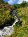 Free Mountain Stream Royalty Free Stock Image - 3361036