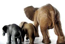 Free Elephant Backsides Stock Image - 3360481