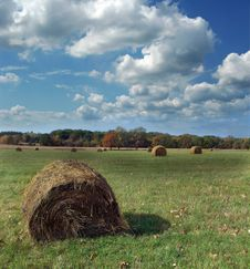 Free Hay Bales In A Field Stock Photos - 3362733