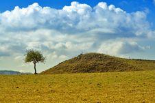 Free Sicilian Landscape Royalty Free Stock Photo - 3362855
