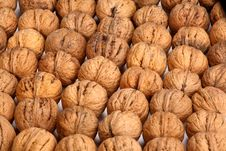 Free Walnuts Background Royalty Free Stock Photography - 3363617