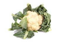 Free Cauliflower Stock Image - 3364131