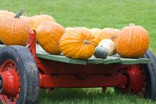 Free Old Red Pumpkin Wagon Stock Photography - 3366072