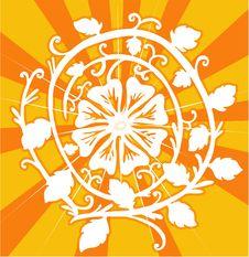 Free Circle Of Flower Royalty Free Stock Image - 3367716