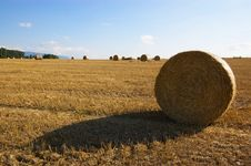 Free Summer Rural Bale Landscape Royalty Free Stock Photos - 3367918