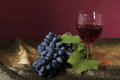 Free Grapes And Wine Stock Photos - 33619033