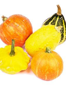 Free Squash And Pumpkins Stock Image - 33617561