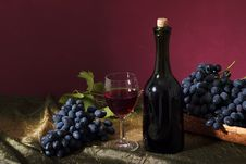 Free Clusters Of Dark Grapes Stock Photography - 33619022
