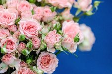 Free Wedding Bouquet Royalty Free Stock Photography - 33650927