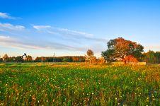 Free Grassland At Dusk Stock Photos - 33697763