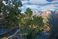 Free Red Rock Canyon, Nevada Royalty Free Stock Photos - 3370758