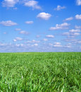 Free Green Field Landscape Stock Photos - 3374363