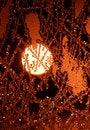 Free Frosty Pattern Stock Photos - 3374433