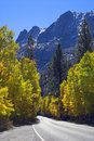 Free Mountain Road In Fall Royalty Free Stock Photo - 3379705