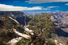 Free The Grand Canyon Royalty Free Stock Photos - 3371768