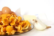 Free Chanterelle Royalty Free Stock Photography - 3372387