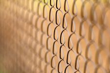 Free Wire Netting - Depth Of Field Stock Photo - 3373080