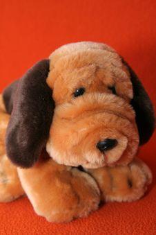 Free Plush Dog 1 Stock Photo - 3373370