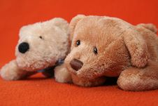 Free Teddy Bears 1 Stock Photos - 3373443
