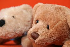 Free Teddy Bears 2 Stock Photography - 3373452