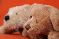 Free Teddy Bears 3 Stock Images - 3373494
