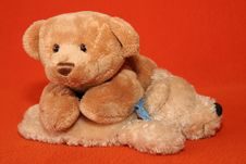 Free Teddy Bears 11 Royalty Free Stock Image - 3373616