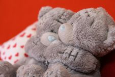 Free Grey Teddy Bears 2 Royalty Free Stock Photography - 3373627