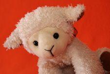 Plush Lamb 1 Royalty Free Stock Image