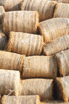 Free Bales Royalty Free Stock Images - 3374159