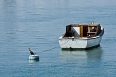 Free Small Boat With Bird Stock Photography - 3376802