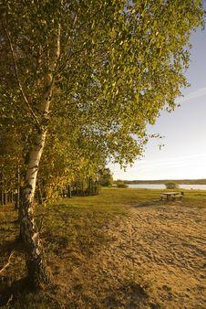 Free Autumn Landscape Stock Image - 3377011