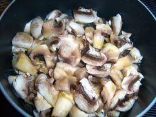 Free Cooking Mooshrooms Royalty Free Stock Photos - 3377748