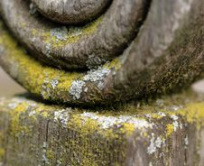 Free Lichen On Wood Post Royalty Free Stock Image - 3378326