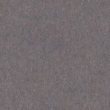 Free Gray Leather Texture Royalty Free Stock Image - 33701126